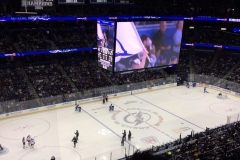 AMALIE_ARENA_Center_Ice